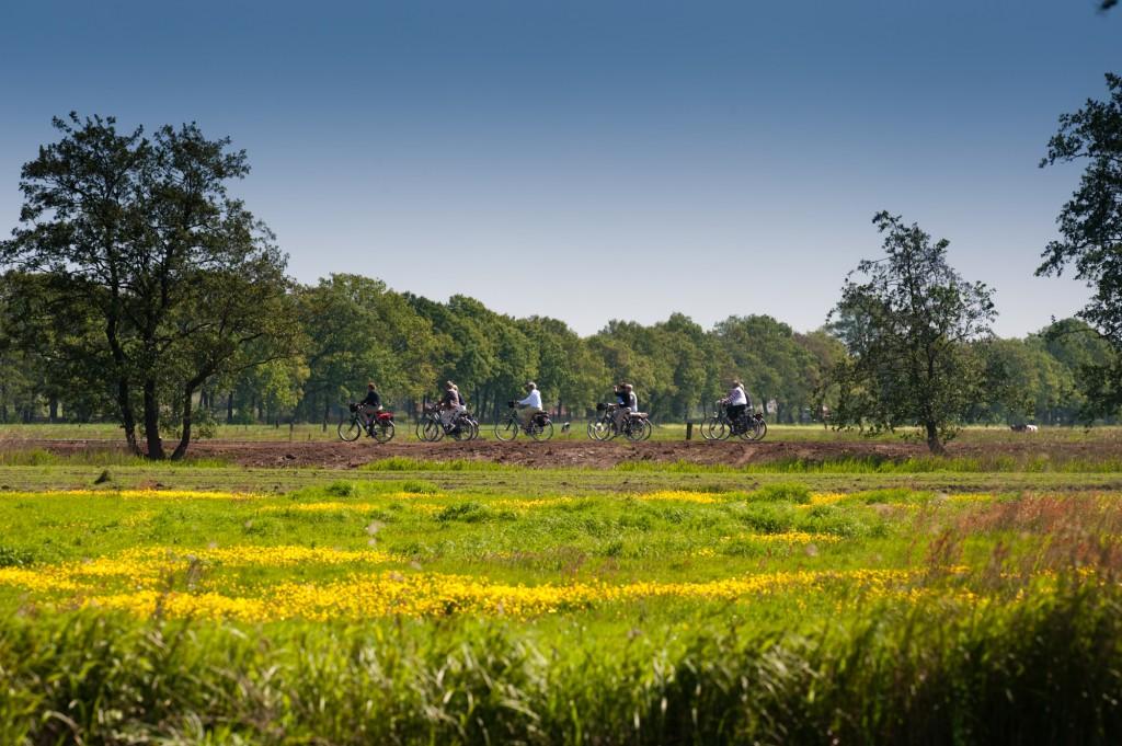 Provinciaal Belang Fryslân